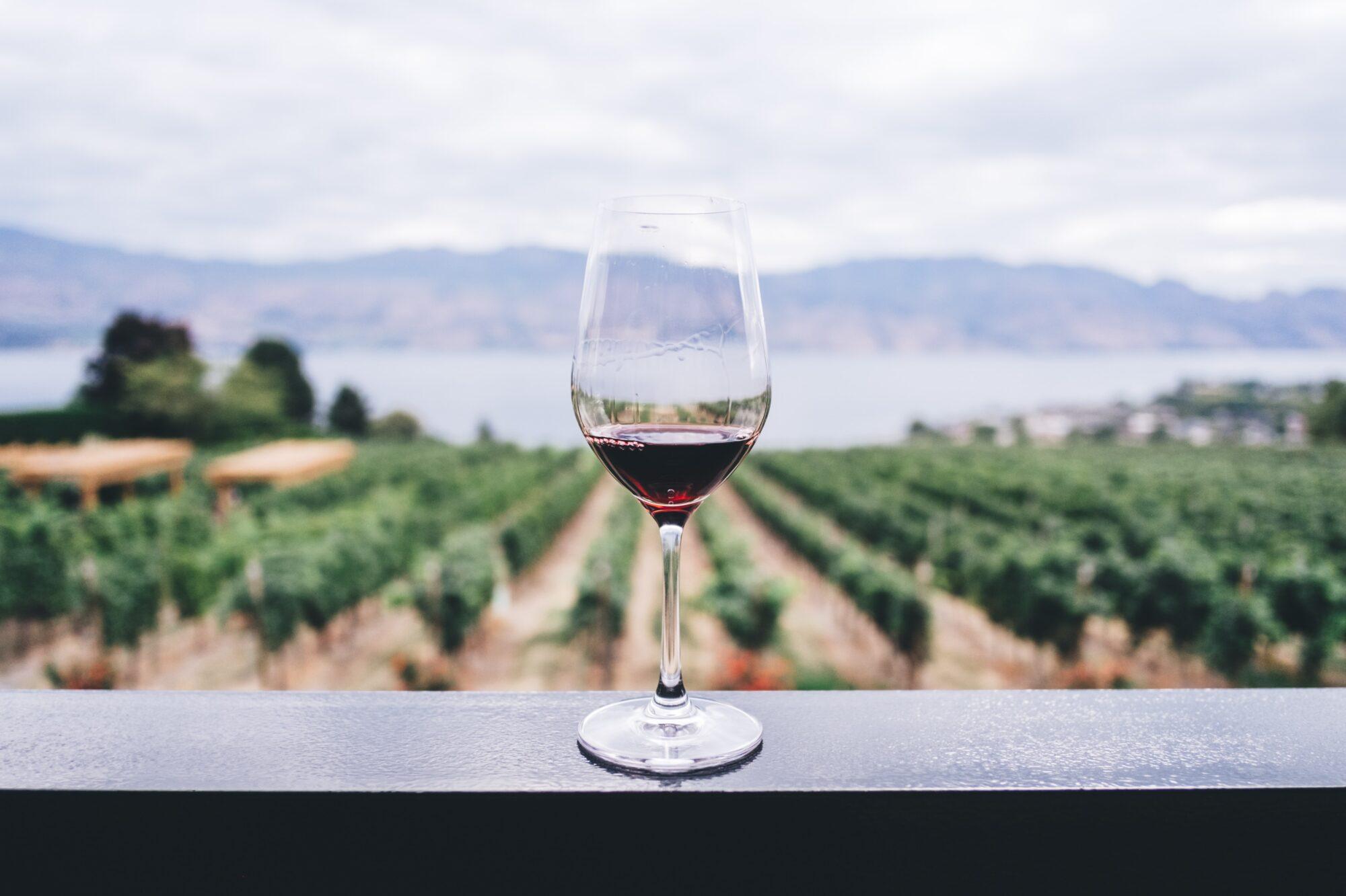 Derfor skal du vælge en flaske fransk vin